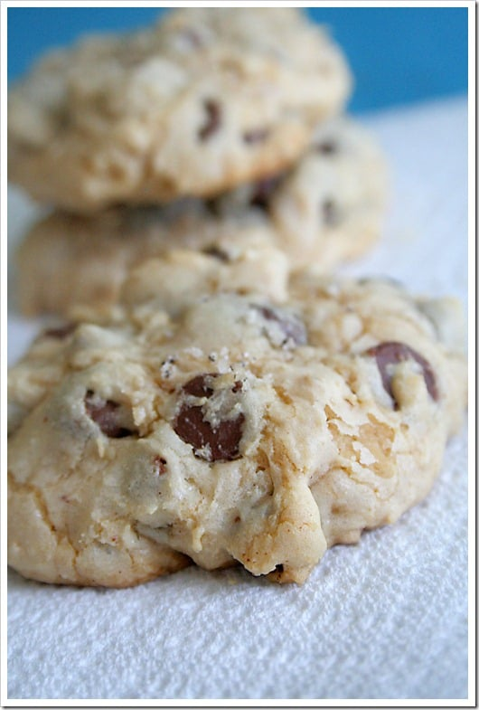 Chocolate Covered Blueberry Chocolate Chunk Cookies