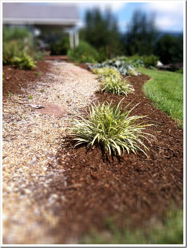 lowes-garden-path