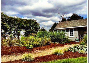 lowes-garden