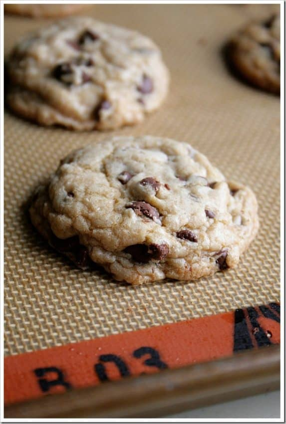 chocolate-chip-silpat-1