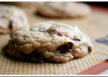 chocolate-chip-silpat-2