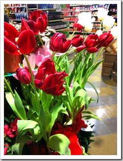 tulips-instore