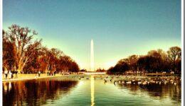 Top Reasons to Visit Washington DC