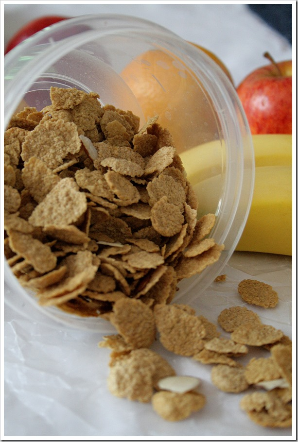 ViSalus-Cereal