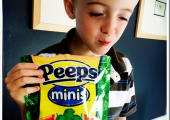 Meet the New Peeps Minis!