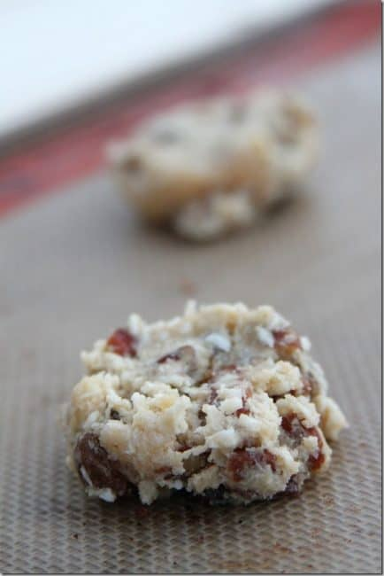 coconut-raisin-cookie-dough