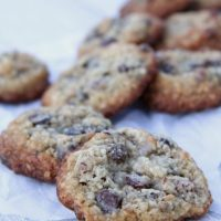 Low Carb Coconut Chocolate Chip Raisin Cookies