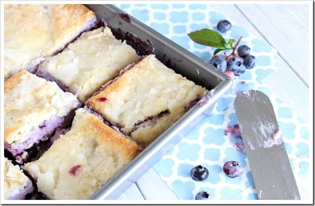 blueberry-cheesecake-bars-1