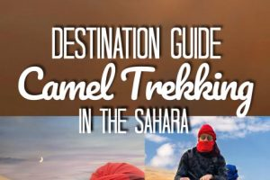 Camel Trek in the Sahara