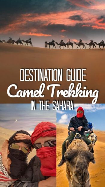 caeml trek in the sahara