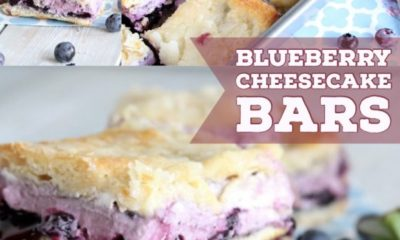 blueberry cheesecake pastry squares