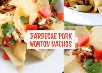 barbeque pork wonton nachos