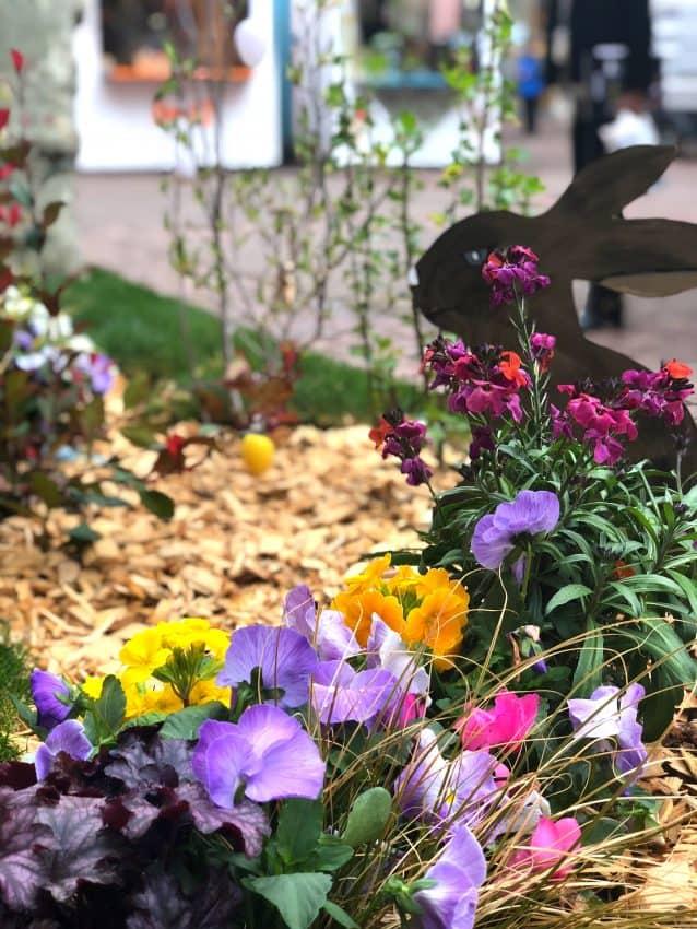 Flowers in Colmar