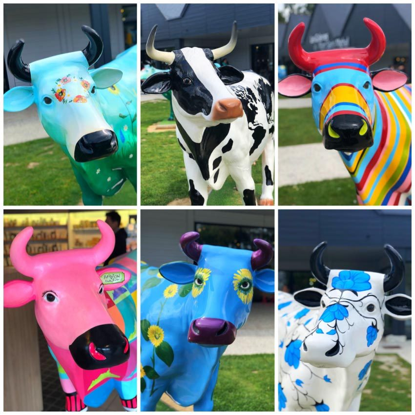 popart cows
